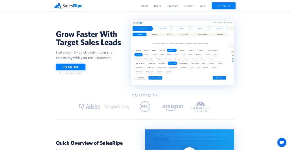 Lead Provider: SalesRipe